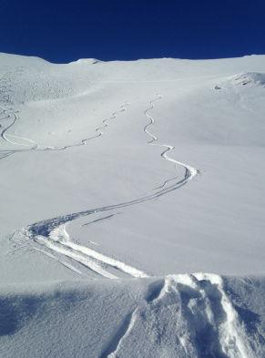Descente à ski poudreuse
