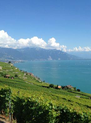 Moment de détente avec vue sur le lac Léman et le Lavaux